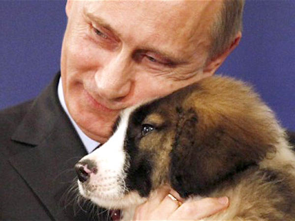 "Russian Prime Minister Vladimir Putin cuddles a Bulgarian  ""Karakachanka"" breed sheepdog puppy, a gift from his Bulgarian counterpart Boiko Borissov, right,  after signing  the agreements on the the South Stream gas transit pipeline, one of the two countries joint energy projects, Sofia Saturday, Nov 13, 2010. (AP Photo/Valentina Petrova)"