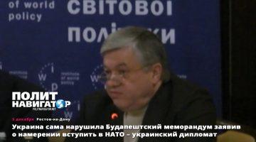 Закон о «ядерной» Украине. Жаль, не внемлют…
