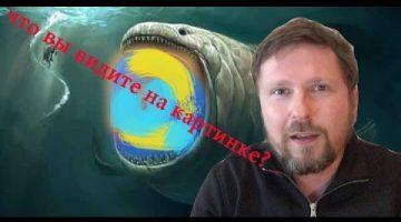 Память рыбки, триколор и просьба Царева