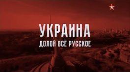 Украина: Долой всё русское. Роман Зыков в «Теории заговора» 25.05.17