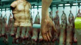 Kanibalizm-768x511