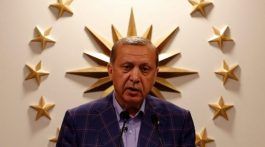 erdogan-zvezda-768x461