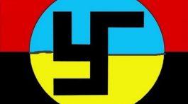 ukraina-fashizm-flag-768x578
