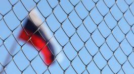 rossiya-flag-setka-768x512