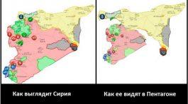 siriya-pentagon-768x447