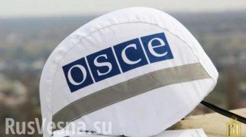 kaska_obse