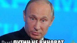 putin_ne_vinovat