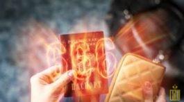 Паспорт СССР, РФ, ТОРы, начертание, система антихриста. А.В.Пугачёва.