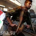 Разгром в котле: ВКС РФ и Армия САР освободили около 100 городов и сёл на пути в Идлиб