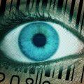 Цифровое будущее накроет граждан России уже в июле