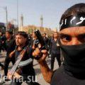 Исламисты и наркобароны объединяются против ЕС
