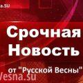 СРОЧНО: На Украине арестована антифашистка Елена Бойко