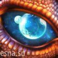 Кожа с драконом: загадки удивительной находки из Средневековья